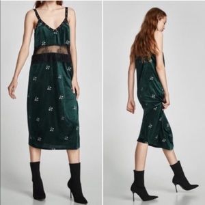 NWT Zara Trafaluc velvet dress